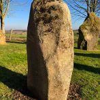 Really lovely example of a finger shaped Preseli Bluestone monolith