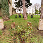 Family plot with four natural headstones